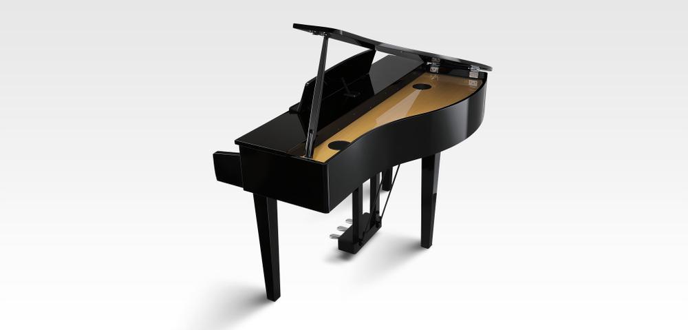 DG30 Digital Grand Piano - Ebony Polish